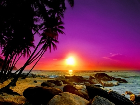 113131-Pink-Sunset-Over-The-Ocean