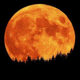 201813-Orange-Full-Moon