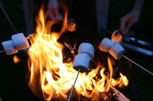 229498-Marshmallows-By-The-Fire