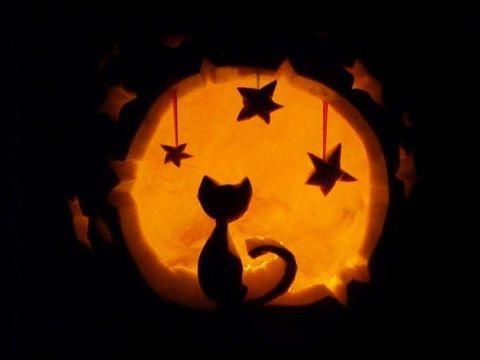 211134-Cats-Moon